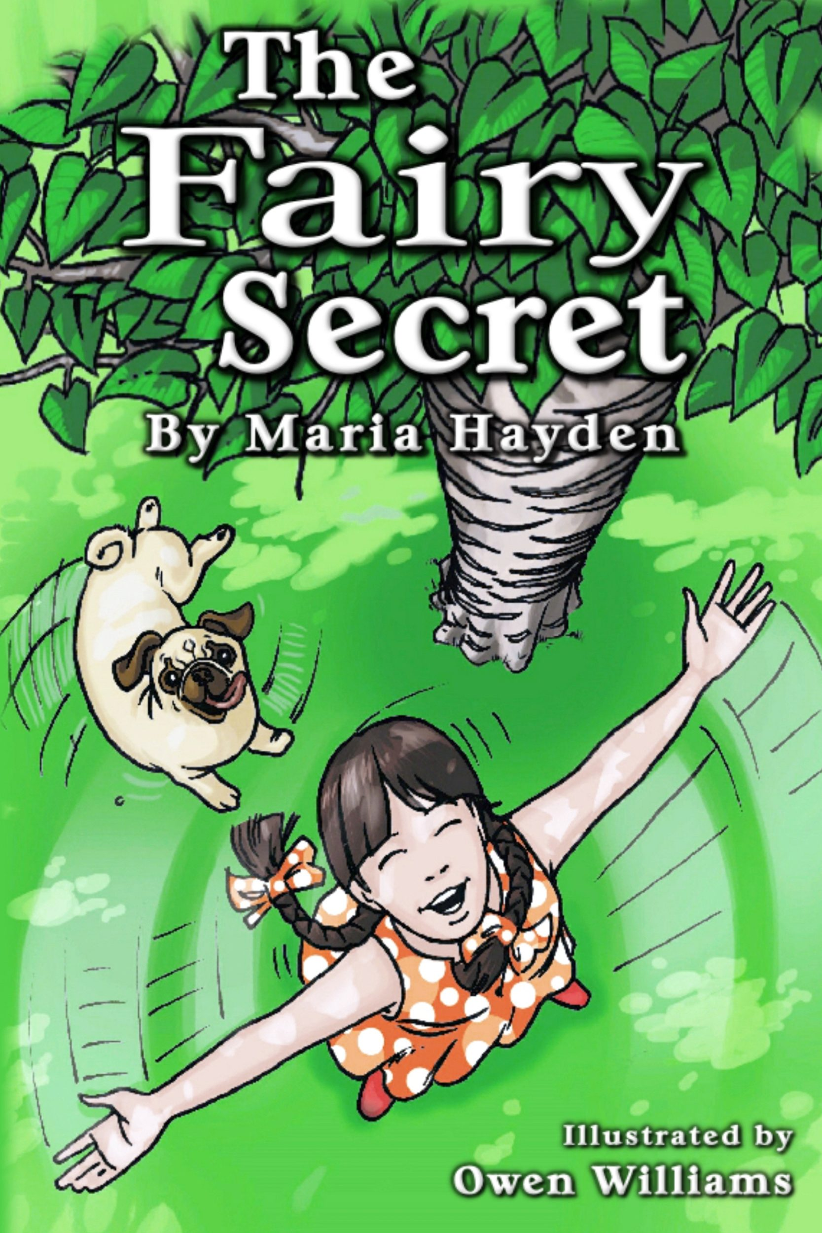 the fairy secret book cover